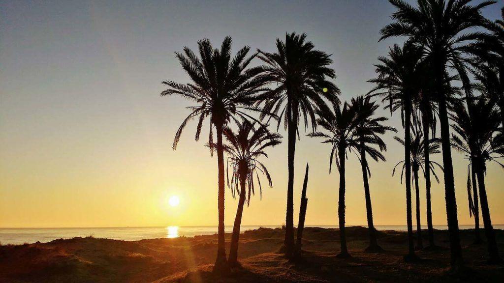 Torrevieja - prawdziwy raj?